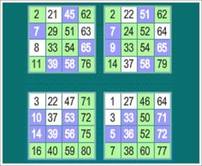Bingo Teilnehmende 505097