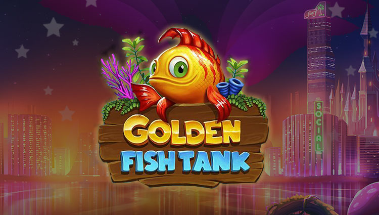 Bonus Golden Lady 706741