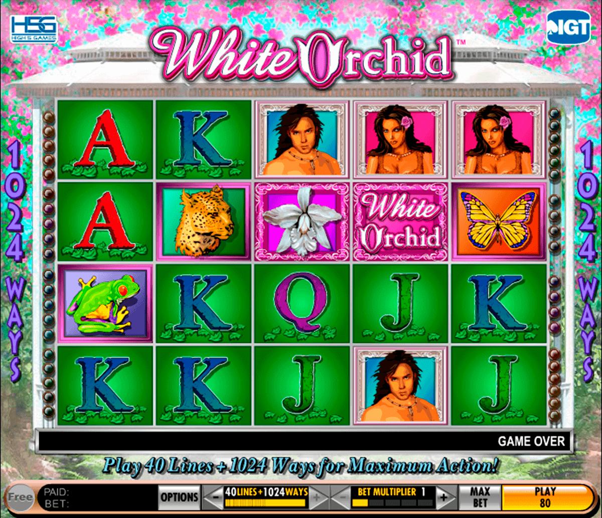 Online Casino 480294