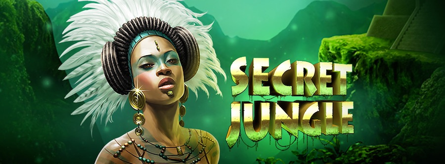 Secret Bonus Cashback 411632